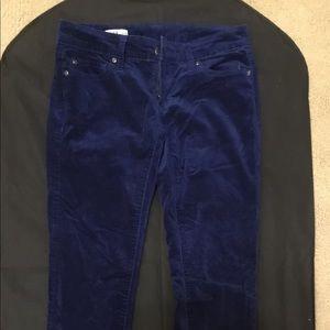 Velvet gap pants